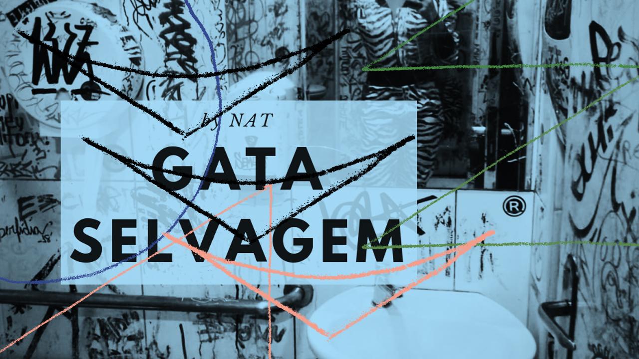 <b>DJ Nat Jako - Gata Selvagem Mixtape</b>
