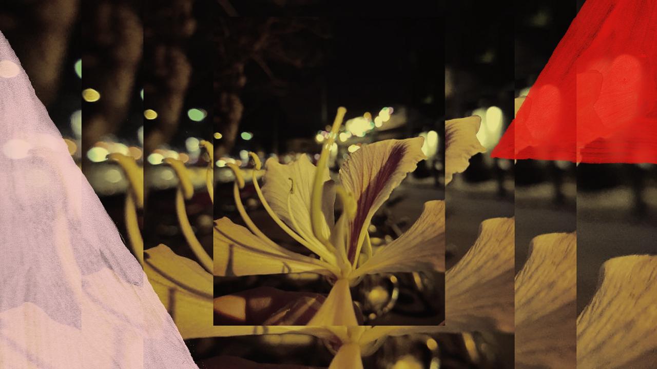<b>DJ Grazi Flores apresenta: Lacuna Tropical #26</b>