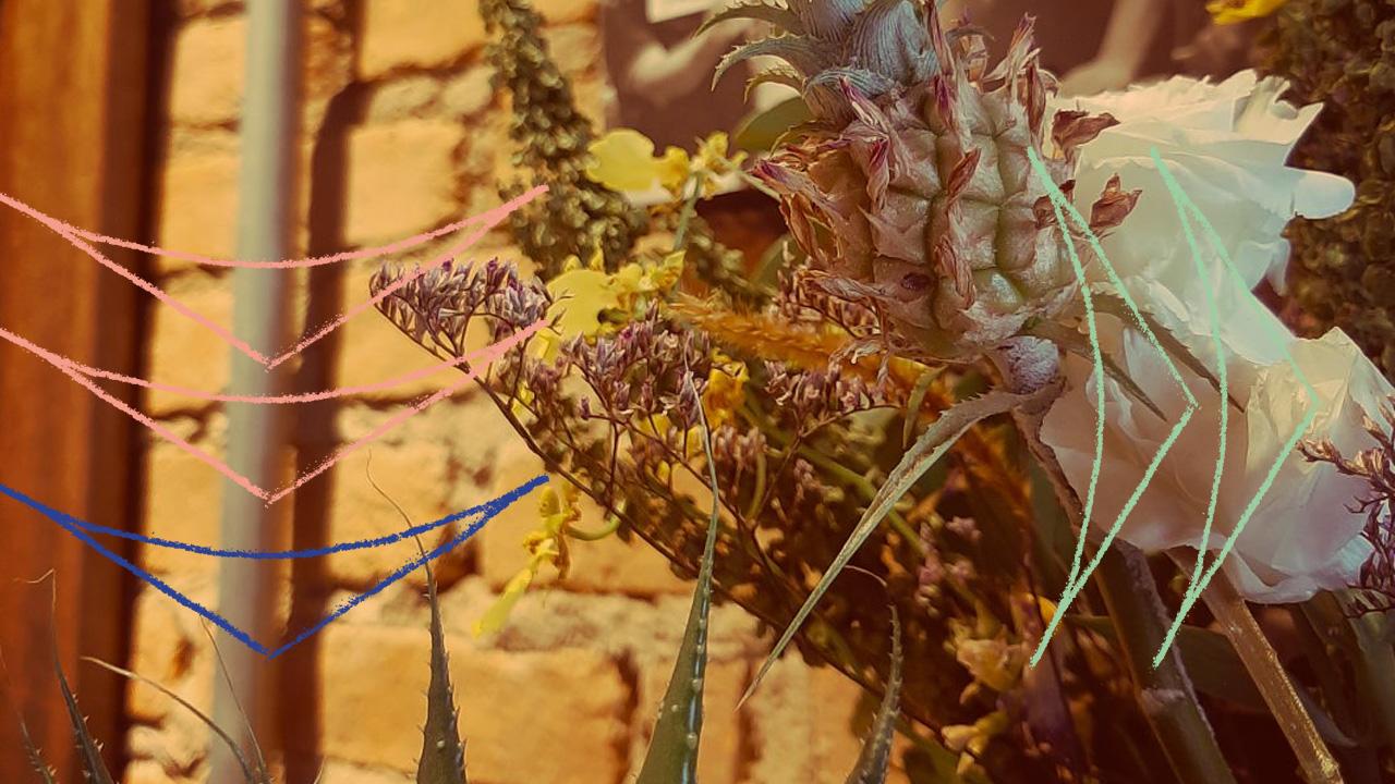 <b>Grazi Flores apresenta: Lacuna Tropical #49</b>