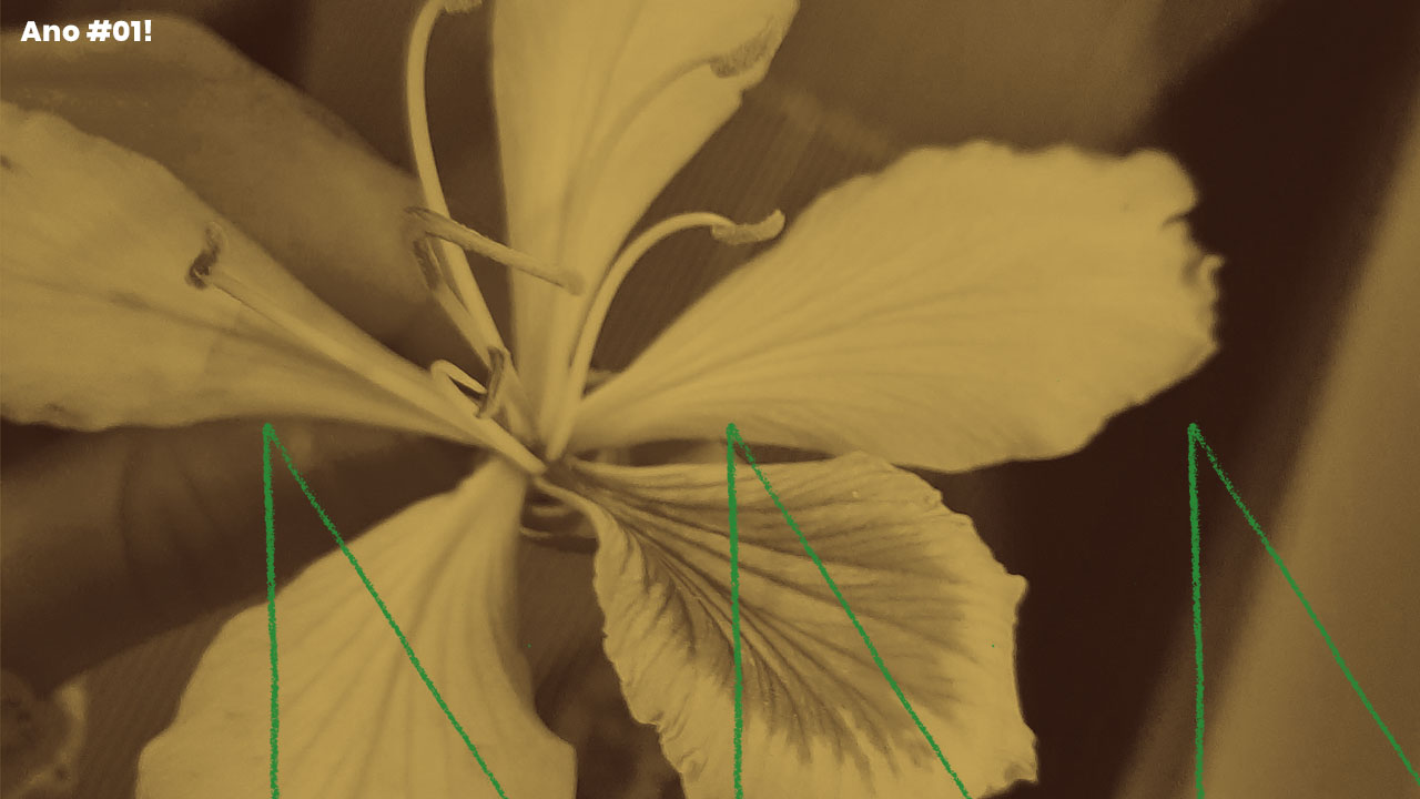<b>Grazi Flores apresenta: Lacuna Tropical #58</b>