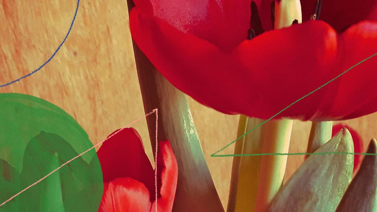 <b>DJ Grazi Flores apresenta: Lacuna Tropical #140</b>